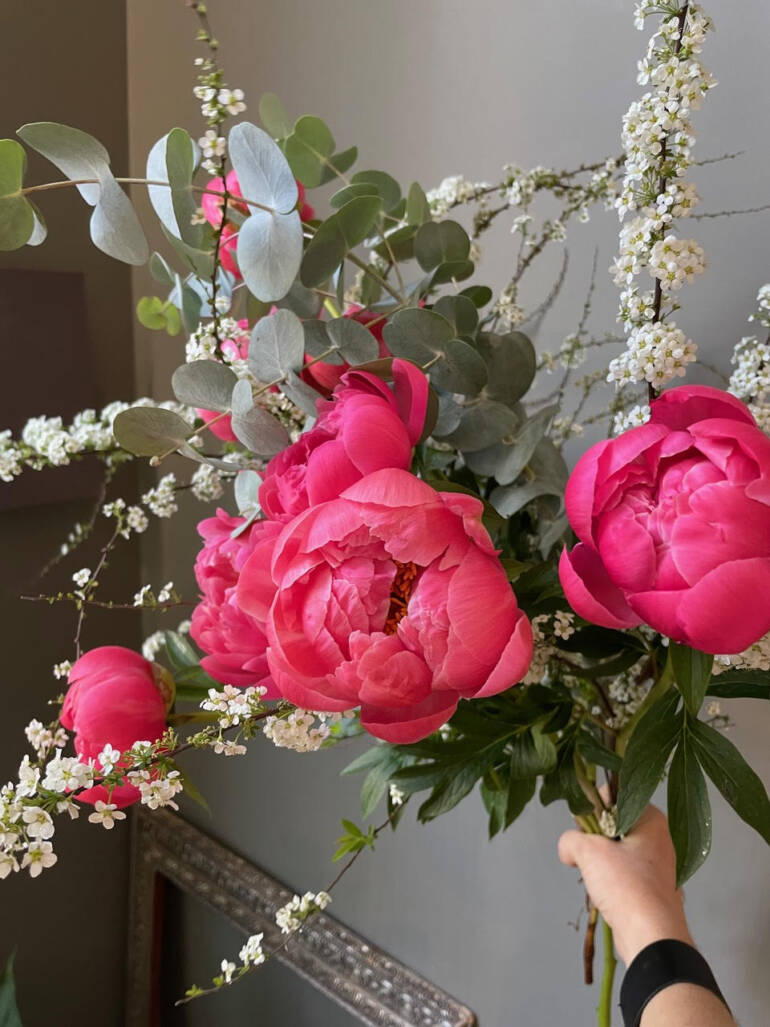 Pojengid ja kevade romantika 🌺